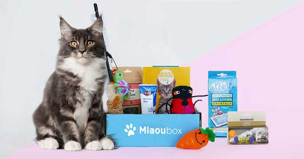 Box pour chat Miaoubox