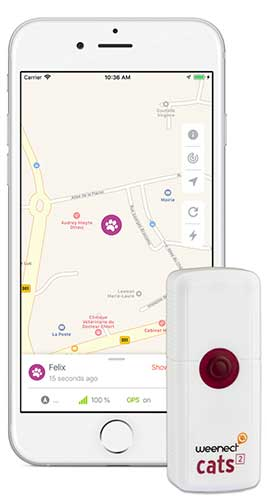 application gps weenect chat