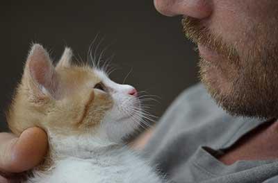 lien unique chat humain