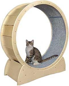 roue pour chat bois